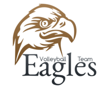 Eagles Volleyball Logaster logo